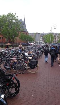 Bikes. Bikes. And more bikes.
