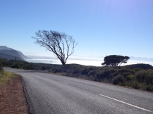 Red Hill Road, Simon's Town, South Africa, Copyright Silverleaf 2014
