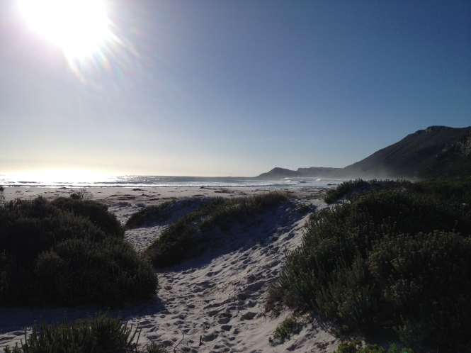 Scarborough Sun, South Africa, Copyright Silverleaf 2014
