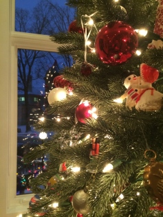 Tree Lights, Copyright Silverleaf 2014