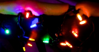 Light Detail, Copyright Silverleaf 2014